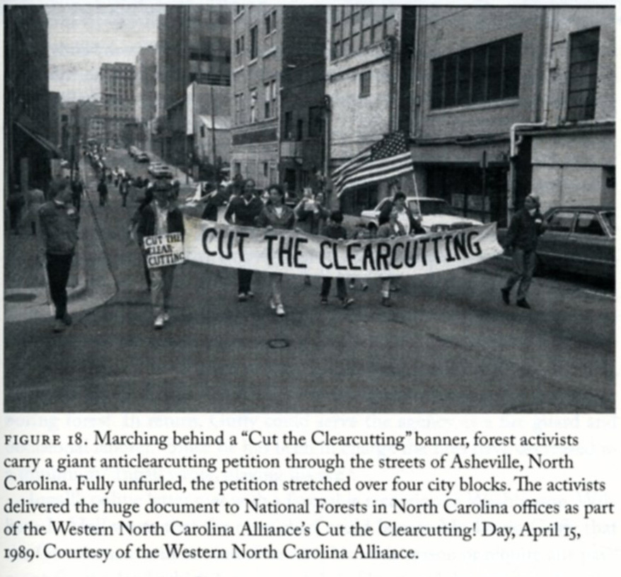 clearcutting photo from book-hi res