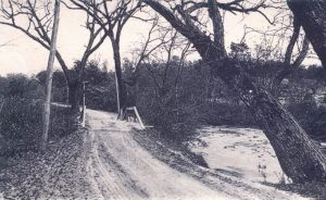 Road along the Swannanoa River from Asheville, 1906. [AA150]