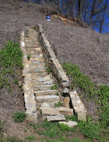 Rex & Stairs.jpg